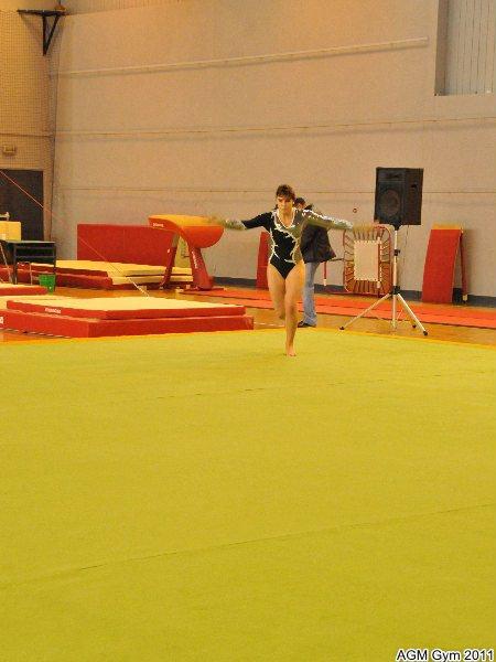 indiv_70_2011_037