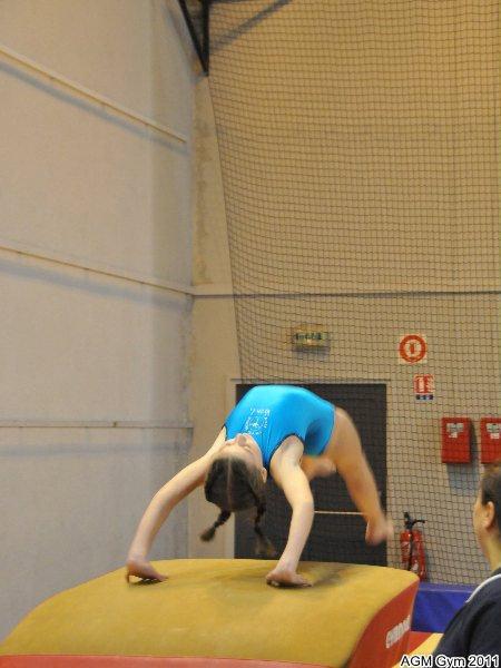 indiv_70_2011_193